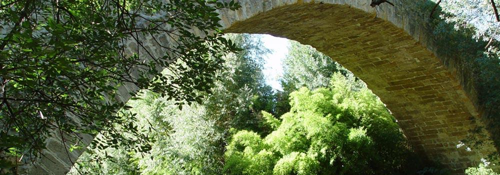 Le dynamisme et le charme de la Provence